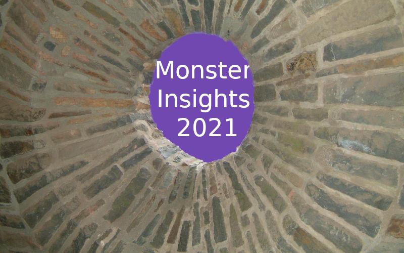 Monster Insights 2021